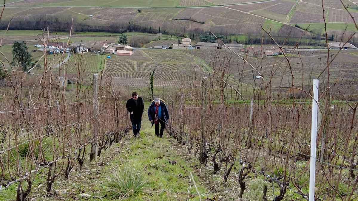 Château Thivin Beaujolais